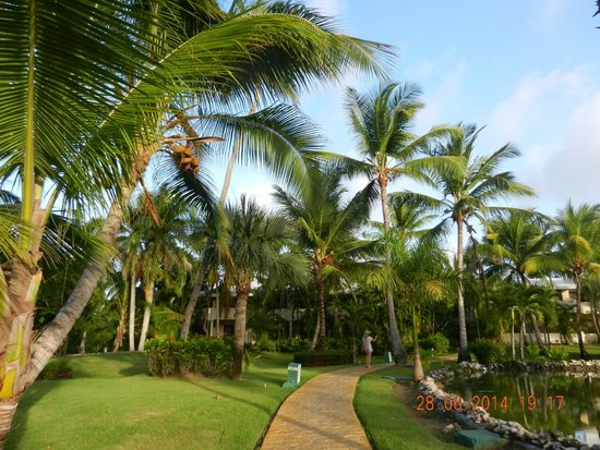Meliá Caribe Tropical: Area comum / Jardim