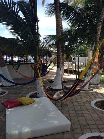 Playa Uvas: Hammocks