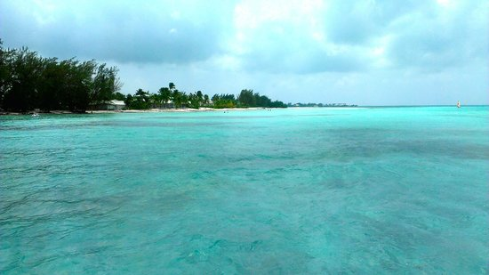 Rum Point: clear waters