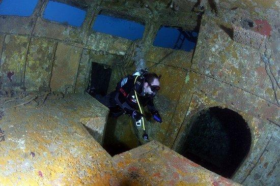 New Zealand Diving: 90s enters the Waikato bridge - thanks for the photo Neil