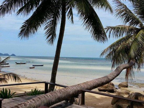 Sunset Cove Resort: Bar / Beach