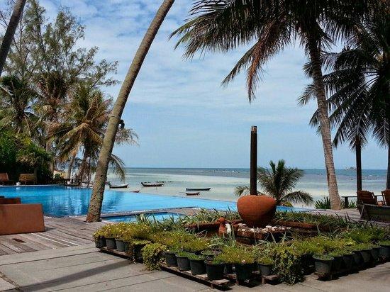 Sunset Cove Resort: Pool