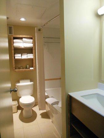 Comfort Inn Downtown: Clean modern bathroom