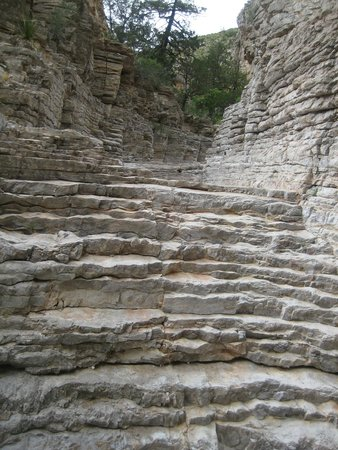 Devilu0027s Hall Trail: Natural Stone Staircase
