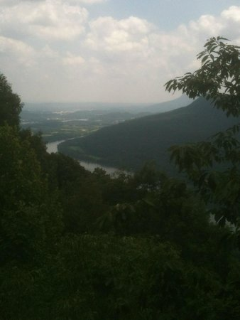 Signal Point: View of the TN river, about a mile down the road