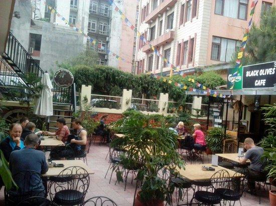 Black Olives Cafe and Bar: Peaceful garden...
