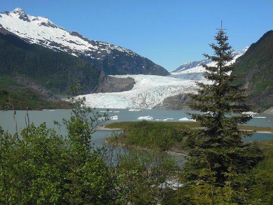 Mendenhall Glacier Visitor Center: Medenhall Glacier