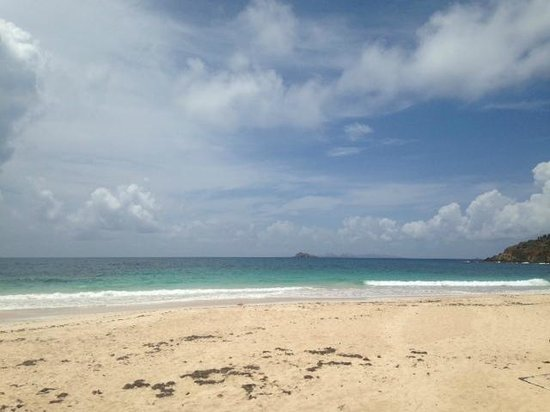 Coconut Reef Surf School: Beach