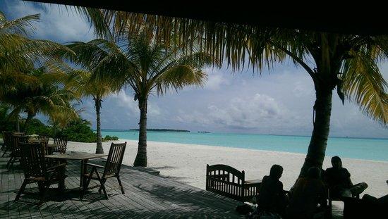 Holiday Island Resort & Spa : 10