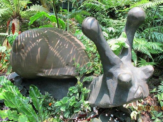 Singapore Botanic Gardens: 蝸牛