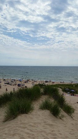 Hoffmaster State Park: Beach from top of sand dune