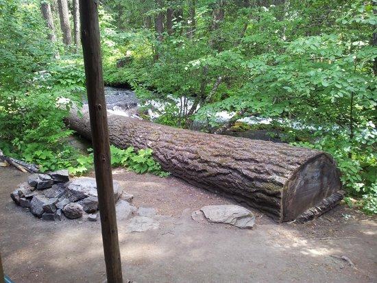 Union Creek Resort: View from Cabin 21 front door