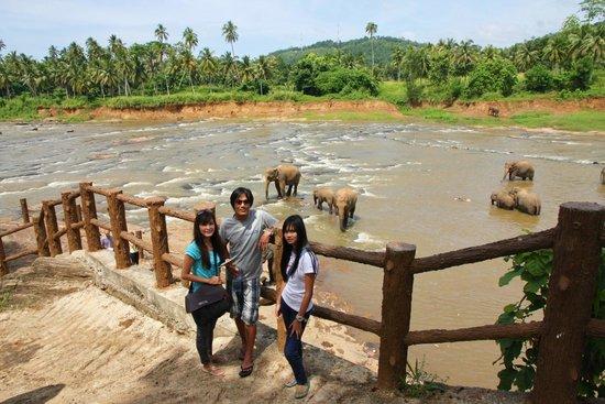 Pinnawala Elephant Orphanage: Pinnawala