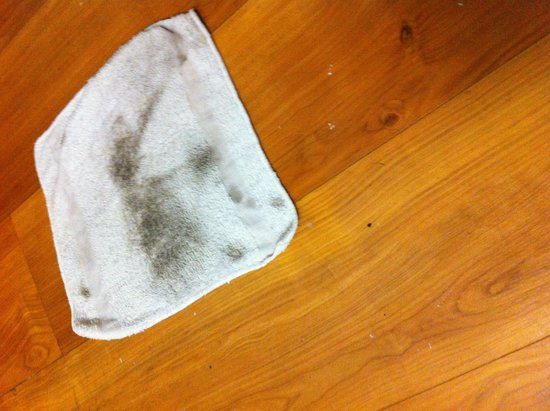 Motel 6 Kansas City: Floor was so dirty our kids' feet were black after walking on the floor. Used a wet rag to wipe
