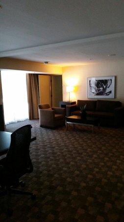 Hilton Anaheim: King suite