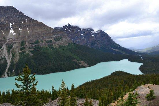 West Trek Tours: Peyto Lake
