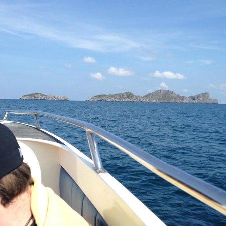 Tours Koh Samui: Speedboat