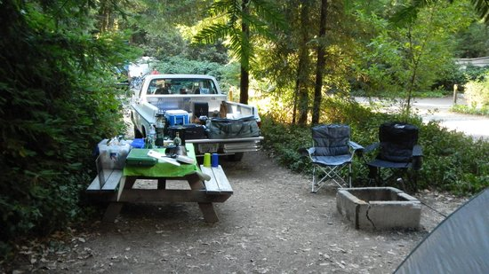 Redwoods River Resort & Campground: My site