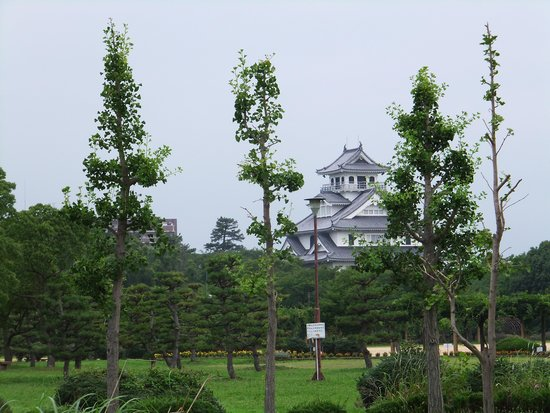 Nagahama Royal Hotel: ホテル前から長浜城