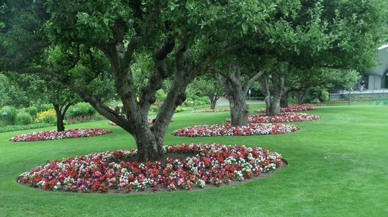 The Butchart Gardens: View in the Buchart Gardens