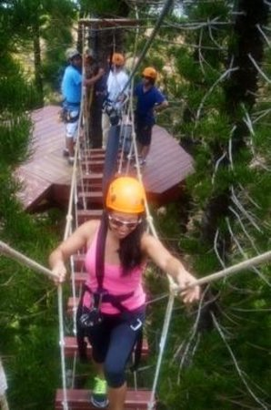 Just Live! Zipline Tours : They call this a bridge..