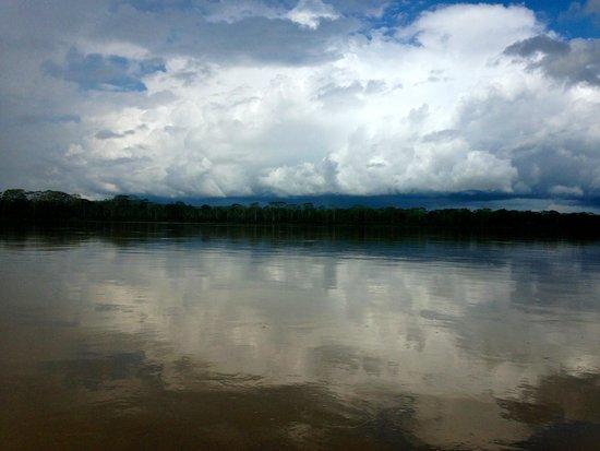 Muyuna Amazon Lodge : Rio Amazonas