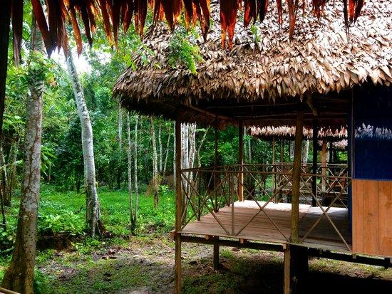 Muyuna Amazon Lodge : cabañas
