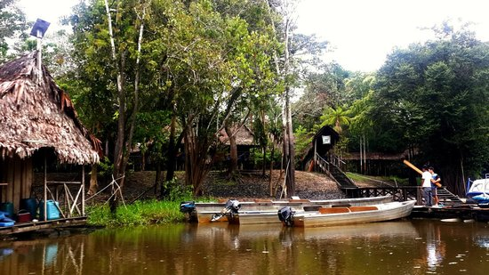 Muyuna Amazon Lodge : muyuna lodge