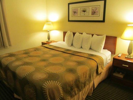 Buena Vista Motor Inn: cama grande y comoda