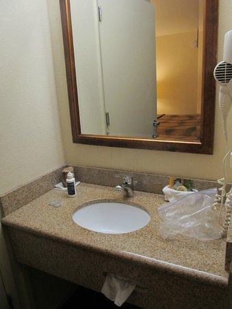 Buena Vista Motor Inn: Baño