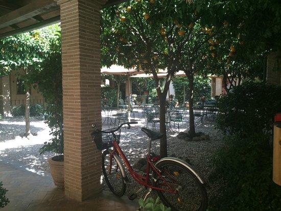 Hotel Santa Maria : courtyard