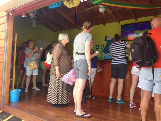 Belize Tourism Village: They were busy