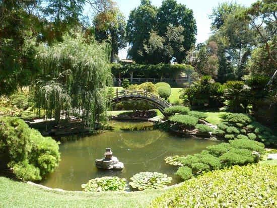 The Huntington Desert Garden: Japanese Garden (I think)