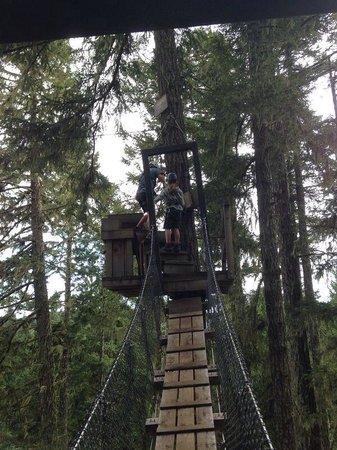 Adrena LINE Zipline Adventure Tours: First the rope bridge...and then