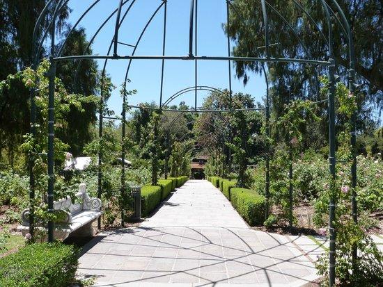 The Huntington Desert Garden: in one of the gardens