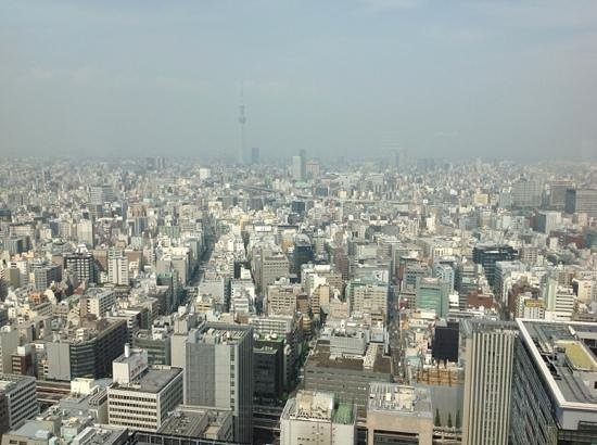 Mandarin Oriental, Tokyo: view from the 36th floor