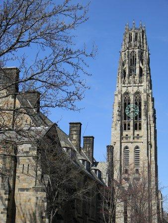 Yale University: Yale 3