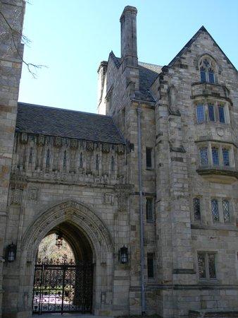 Yale University: Yale 4
