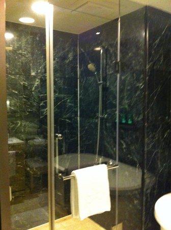 Hotel Nikko Saigon: シャワー 水圧オッケー