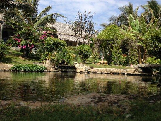 TTC Resort Premium - Ke Ga: Вид на пруд