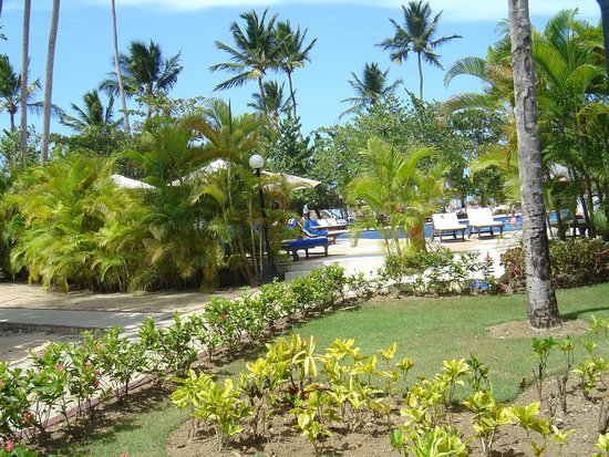 Grand Bahia Principe El Portillo: La parc
