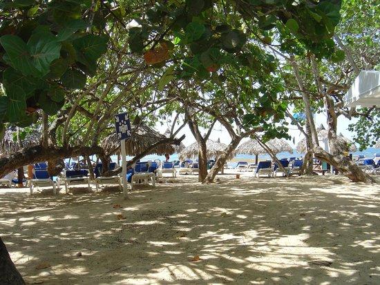 Grand Bahia Principe El Portillo: La plage
