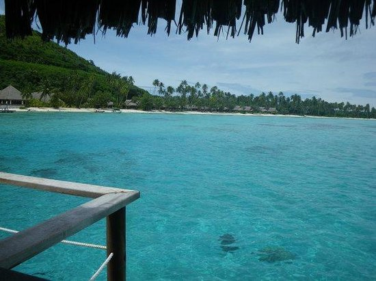 Sofitel Moorea Ia Ora Beach Resort : From our bungalow