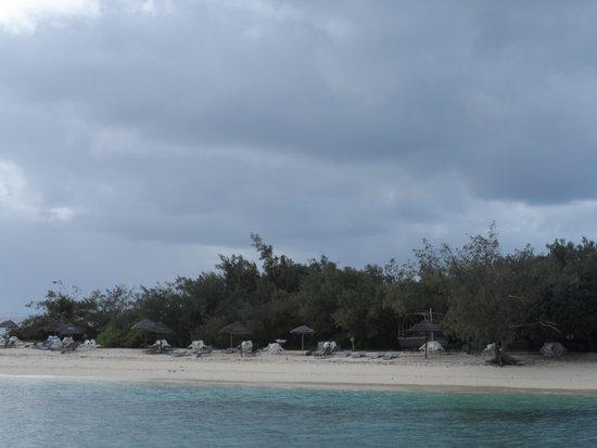Isla del faro Amedee: Amedee island