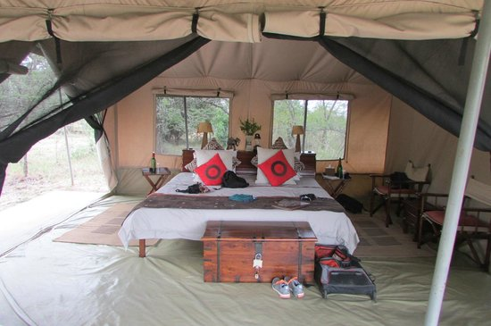 Leleshwa Camp: our tent