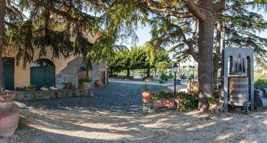 Casale Colle dell'Asino: Casale e Terrazza Panoramica