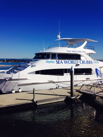 Sea World Whale Watch: Beautifully outfitted boat to enjoy an exciting whale watching experience.