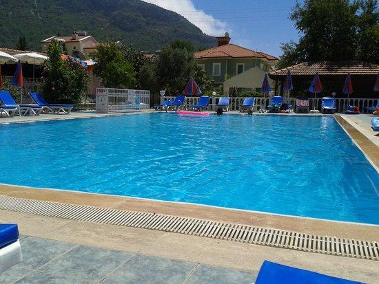 Hotel Babadag : Pool