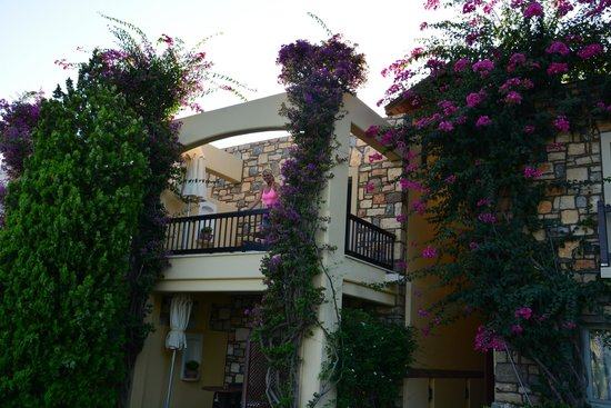 Divan Bodrum : Room 227, lovely,... for 650 Euros a night.