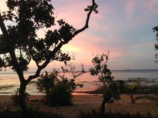 Cashew Grove Beach Resort : Glorious sunset